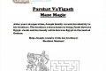Maze Magic: VaYigash