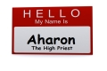 Personal Parsha: Aharon, the High Priest