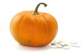 Pumpkin_th
