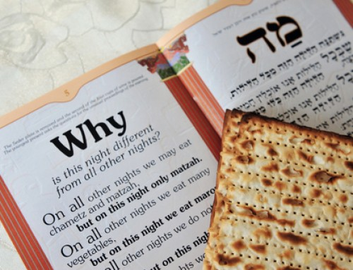 Make Seder Exciting for Kids!
